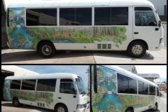 Toyota Coaster Bus Tint