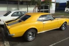 Camaro Classic Car Tint